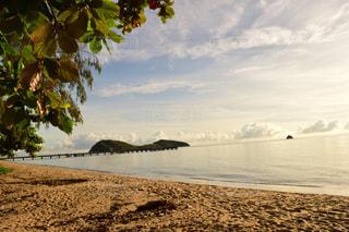 水の体の近くのビーチの人々 のグループの写真・画像素材[1248048]