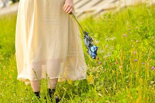 草の中に立っている人の写真・画像素材[1803795]
