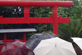 雨,傘,神社,鳥居,観光,旅行,梅雨,6月,山口,長門