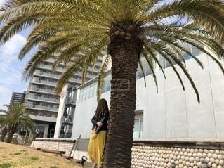 建物の前のヤシの木の隣に立っている人の写真・画像素材[2778533]