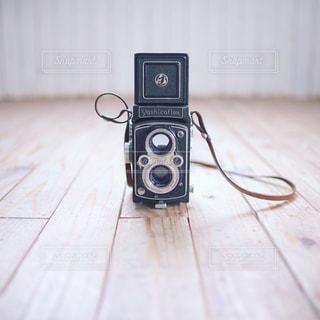 木製の床の上に横たわる猫の写真・画像素材[1208557]