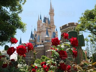花とお城の写真・画像素材[1376930]