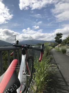サイクリング,ロードバイク,南河内,健康診断,石川河川敷