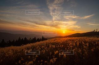 自然,秋,夕日,紅葉,登山,11月,生石高原