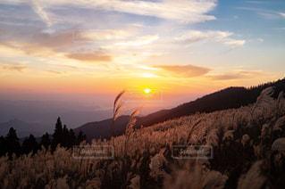 自然,秋,夕日,紅葉,景色,登山,11月,生石高原