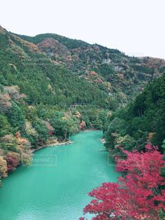 秋,絶景,紅葉,観光地,もみじ,東京都,渓谷,11月,鳩ノ巣渓谷,奥多摩町