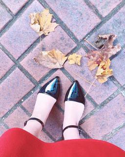 秋の散歩道の写真・画像素材[1800539]