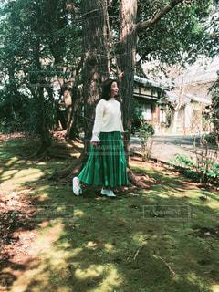 新緑の季節の写真・画像素材[2095703]
