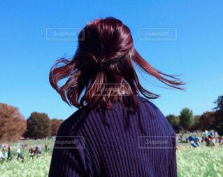 そよ風に吹かれて踊るサラサラ髪の写真・画像素材[2290600]