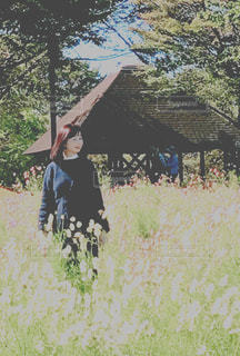 女性,公園,花畑,屋外,ワンピース,コスモス,レトロ,優しい,ナチュラル,フィルム,雰囲気,カラー,ニット,自然光,フィルム写真,柔らか,フェミニン,フィルムフォト