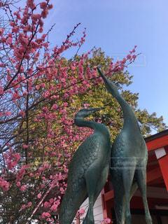 梅と鶴の写真・画像素材[1213714]