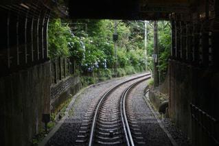 線路,紫陽花,トンネル,梅雨,江ノ電