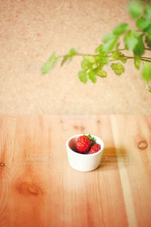 摘み立て苺の写真・画像素材[3204204]