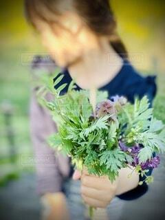春の草花をプレゼントの写真・画像素材[4227325]
