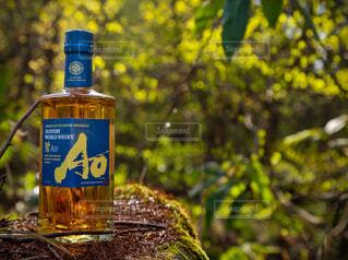 自然,アウトドア,屋外,森,緑,青,黄色,林,樹木,苔,岩,新緑,ボトル,ビール,ウイスキー,ドリンク,アルコール,金,飲料,輝き,ソフトド リンク,AO