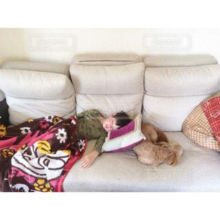 犬,お部屋,部屋,室内,子供,幸せ,お昼寝,のんびり,まったり,お家,くつろぎ