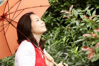 雨,傘,梅雨,つゆ,6月,ツユ