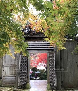 建物の前に茂みに家の写真・画像素材[1608193]