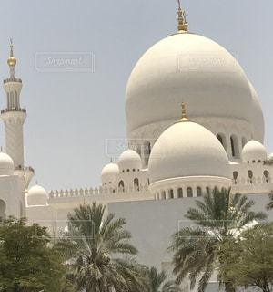 屋外,白,旅行,旅,モスク,ホワイト,アブダビ,サルタンモスク