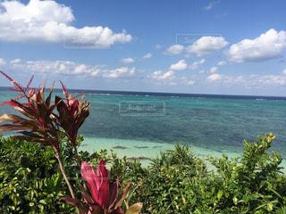 青い海と空の写真・画像素材[1216256]