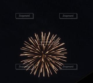 打ち上げ花火の写真・画像素材[1348816]