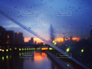 雨の写真・画像素材[538639]