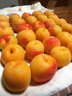 食べ物,オレンジ,フルーツ,果物,丸,果実,食材,アプリコット,杏子,杏