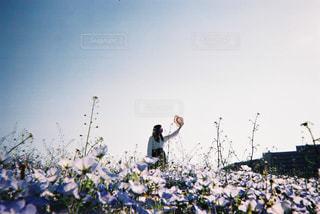 青の海の写真・画像素材[1238841]