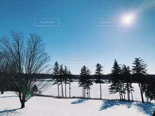 寒空の写真・画像素材[1769936]
