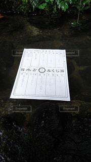 貴船神社でおみくじの写真・画像素材[1224531]