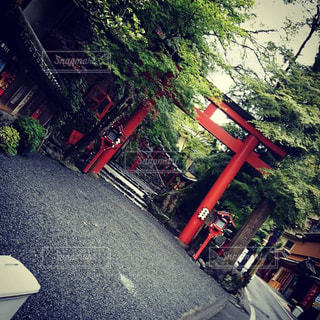 貴船神社の写真・画像素材[1235021]