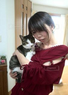 猫を持っている私の写真・画像素材[1236205]
