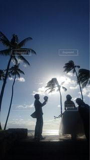 ハワイウェディングでの写真撮影の写真・画像素材[1246617]