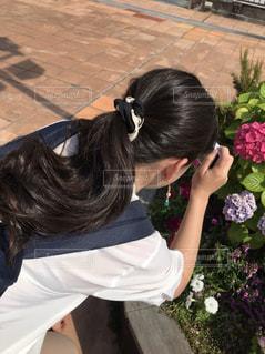 私と紫陽花の写真・画像素材[1252163]