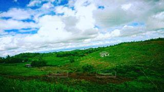 近くに緑豊かな緑のフィールドのの写真・画像素材[1229797]