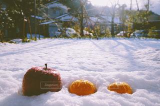 りんご、みかん、ゆき。の写真・画像素材[1745098]