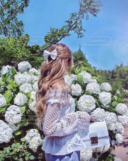 女性,花,お花畑,屋外,晴れ,あじさい,景色,鮮やか,樹木,人物,リボン,人,梅雨,快晴,金髪,草木,ガーデン,フォトジェニック
