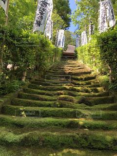自然,屋外,旅行,鎌倉,まったり,ゆったり,眺め