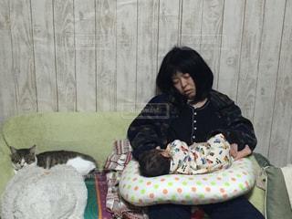 猫,動物,屋内,親子,寝転ぶ,お昼寝,1歳児