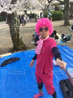 桜,ピンク,花見,仮装,場所取り
