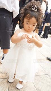 初めての結婚式の写真・画像素材[1242175]