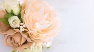 近くの花のアップの写真・画像素材[1813633]