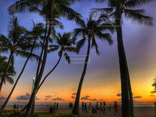 風景,夕日,ビーチ,ハワイ,野外,ホノルル