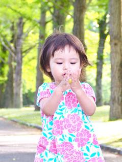 公園の少女の写真・画像素材[1261155]