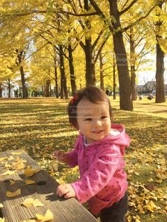 茨城県立歴史館の写真・画像素材[1600838]