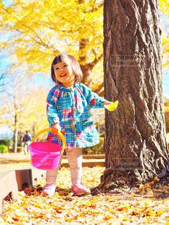 落ち葉で遊ぶ女の子の写真・画像素材[1631414]