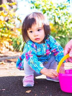 落ち葉で遊ぶ女の子の写真・画像素材[1631415]