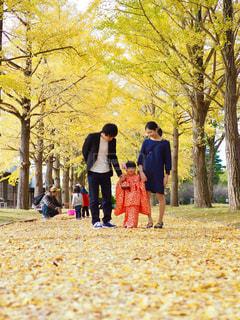 3歳七五三の家族写真の写真・画像素材[1631448]