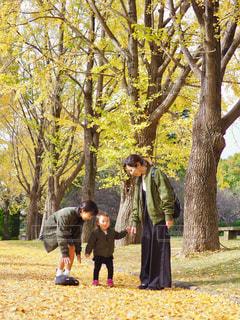 仲良し家族のリンクコーデの写真・画像素材[1631458]