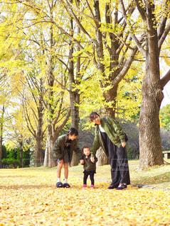 仲良し親子のリンクコーデの写真・画像素材[1631461]